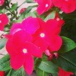 wpid-IMG_20130817_172342.jpg